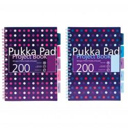 Kołozeszyt A4 200k PUKKA PAD Project Book