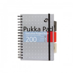 Kołozeszyt Puuka Pad A4 Project Book Metallic z Gumką